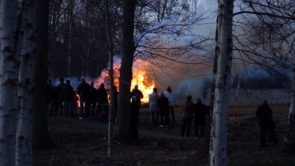 Valborg2013 (10)