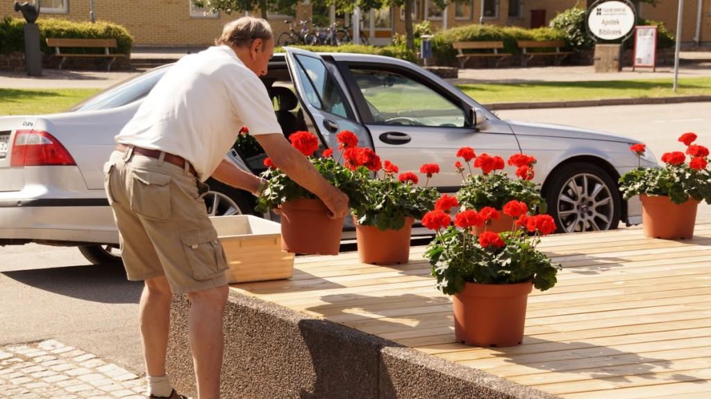 Harry Plantman tyckte att det fick vara nog och såg till att skaffa fram blommor.
