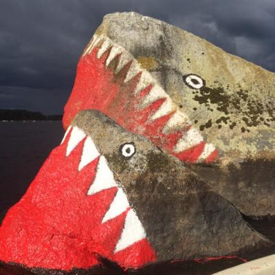 Hajarna i Hönshyltefjorden